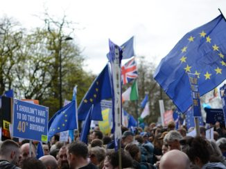 Flags and placards at the People's Vote march, London, 23 March 2019