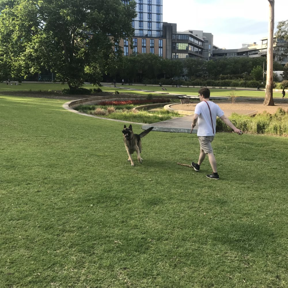 A child running with his dog