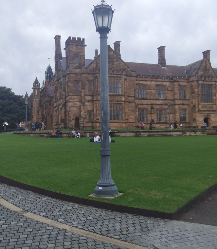 A grey street lamp on the grass in front of the Quadrangle