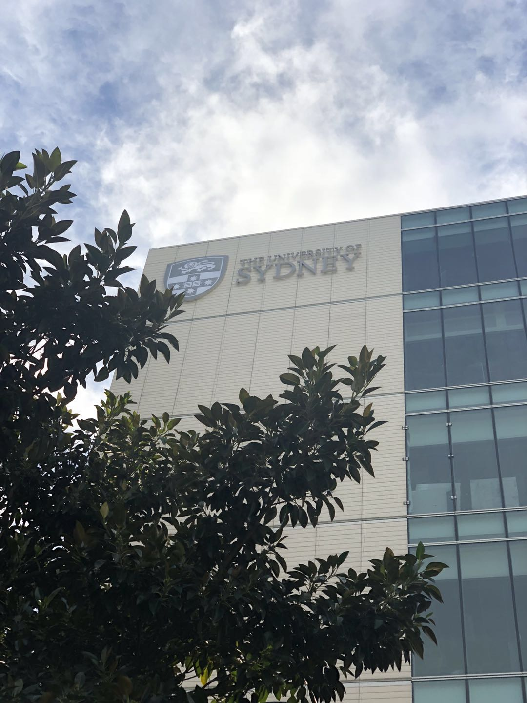 USYD logo Beside overpass