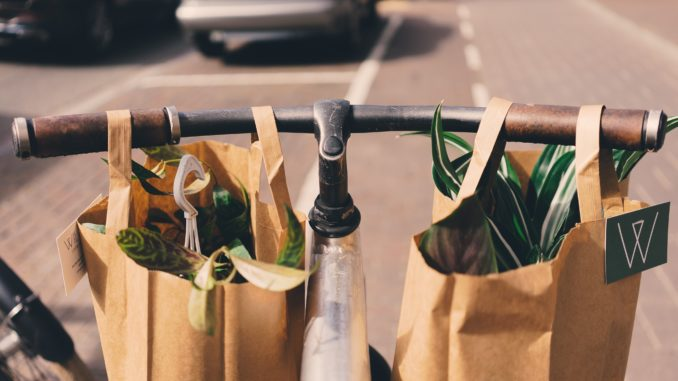 Two brown paper bags filled with plants hang from bicycle handlebars.