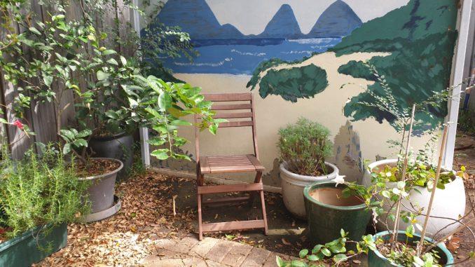 A corner of my garden