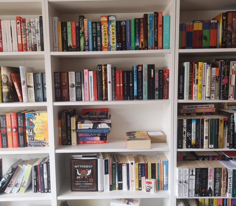 Shelves with books