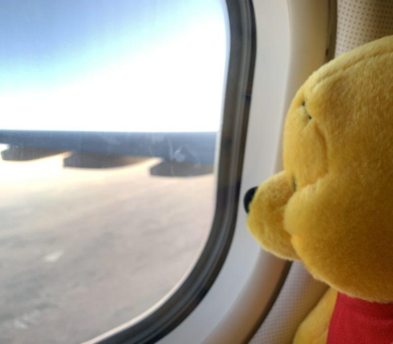 Winnie's landing