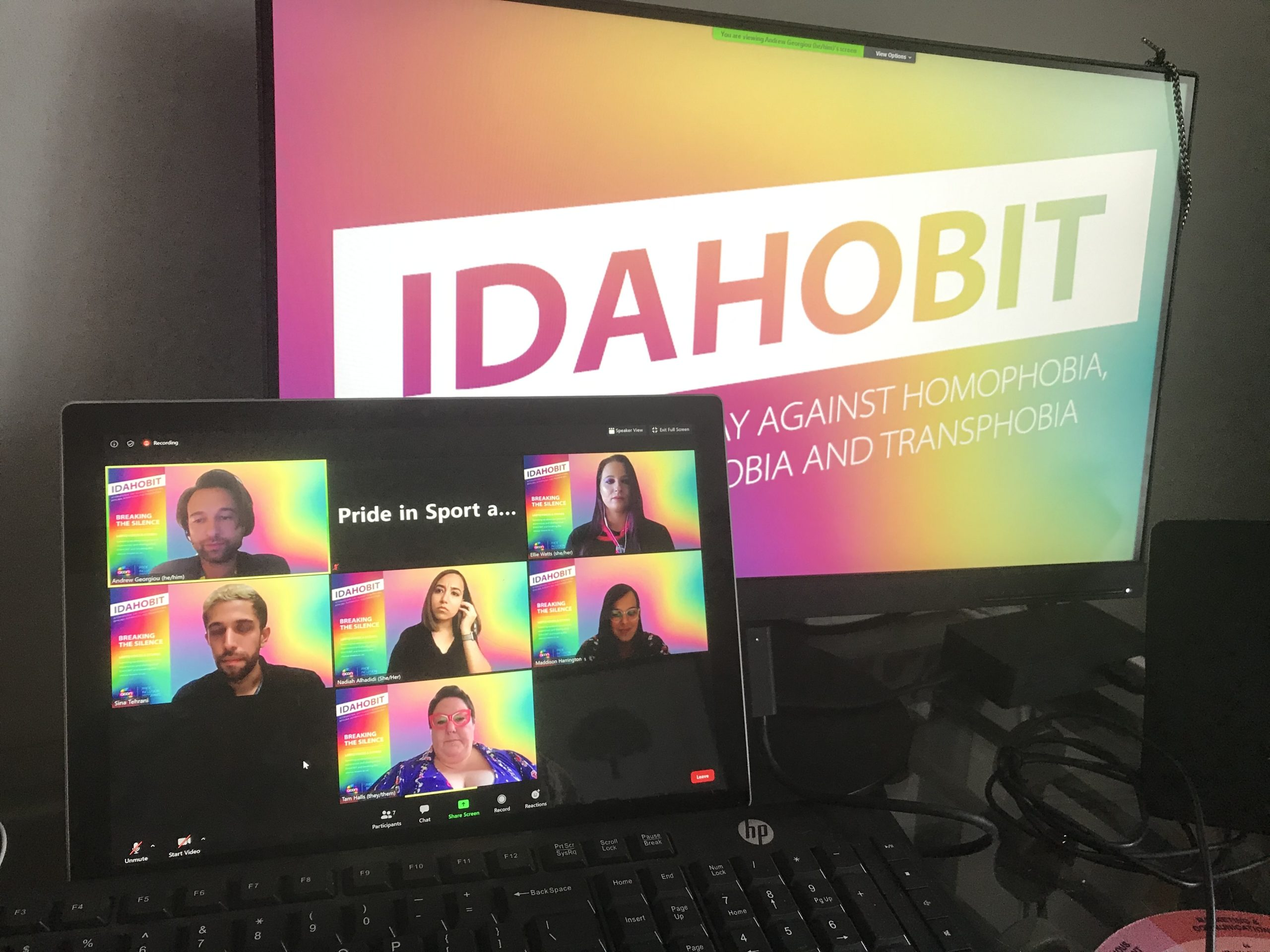 A view of the IDAHOBIT panel on Zoom