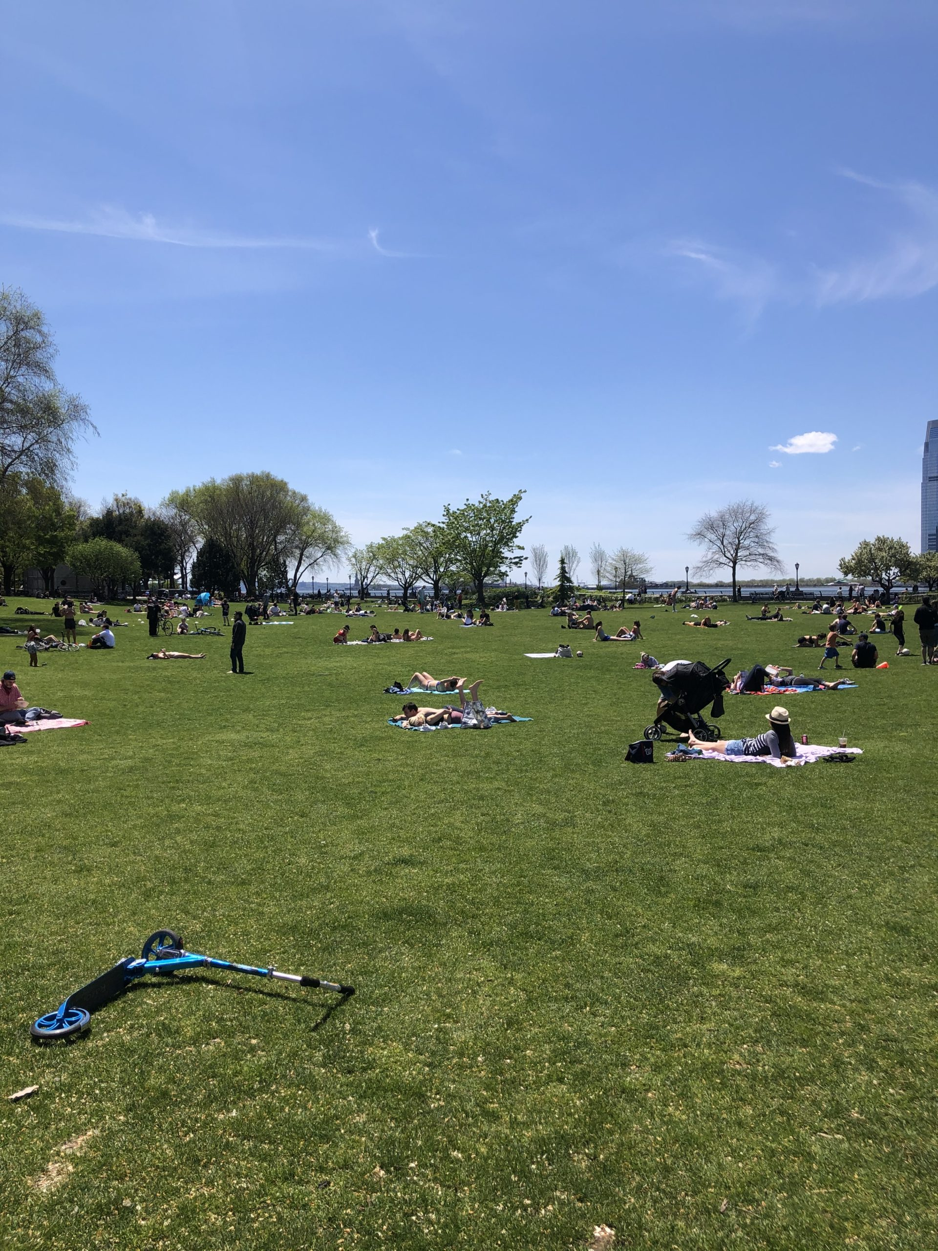 People sunbaking in a park