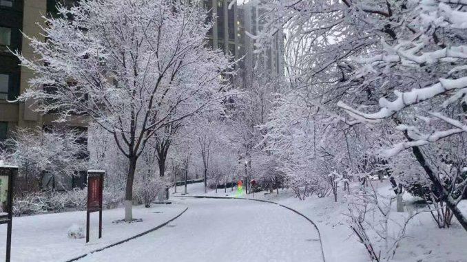Snow in Beijing during coronavirus